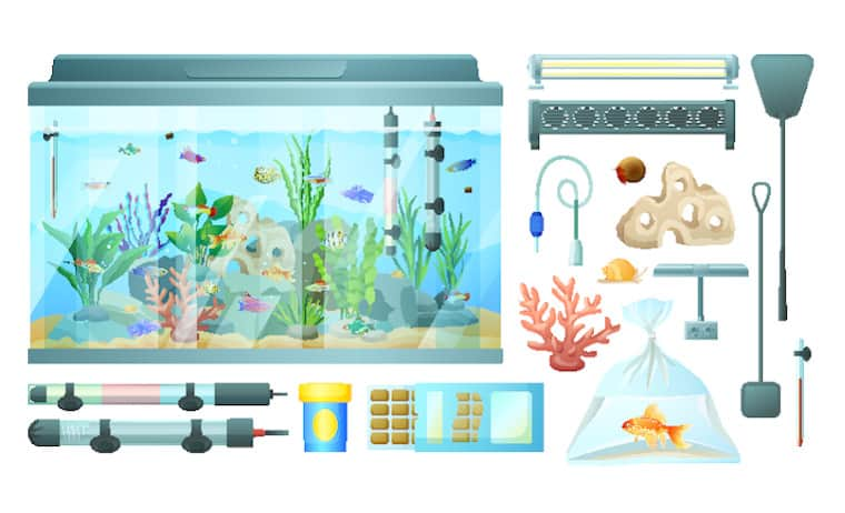 Equipment for Saltwater Tanks