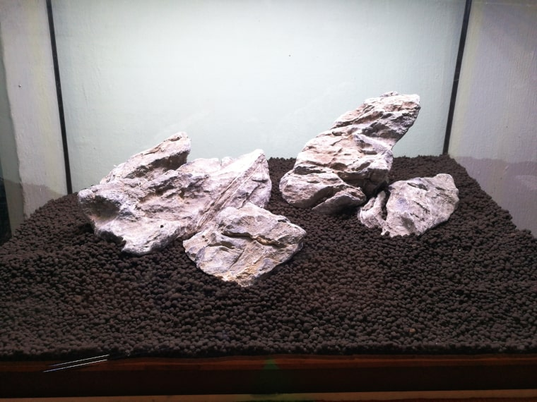 Rocks and Substrate in Saltwater Aquarium