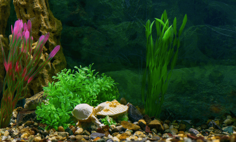 Artificial and Silk Aquarium Plants